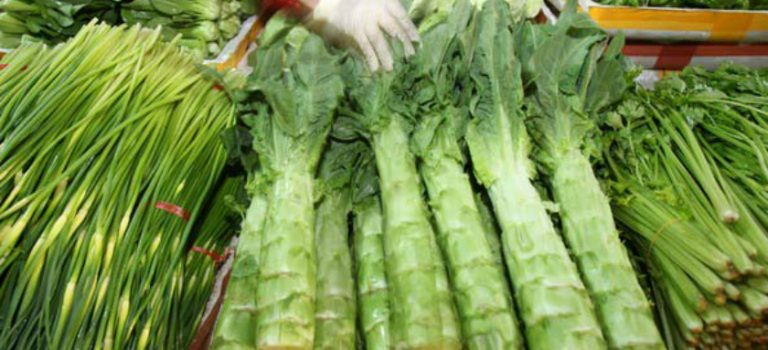 Let's Eat… Vegetables – A Guide to Common Chinese Vegetables